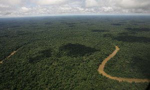 -Yasuni-National-Park-in--001