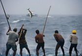 tuna-catchers(2)