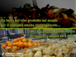 Green USiena Food 3